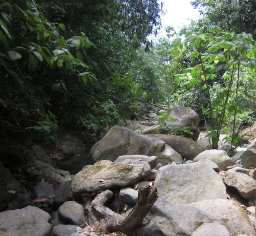 hiking-up-the-river-bed