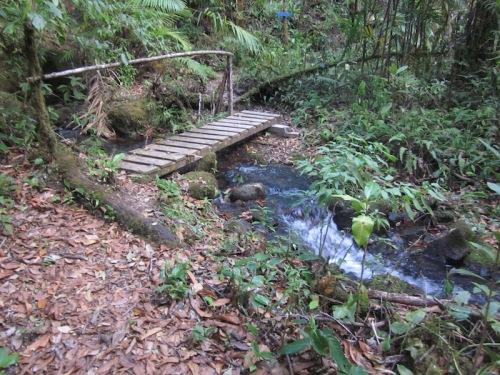 river san gerado