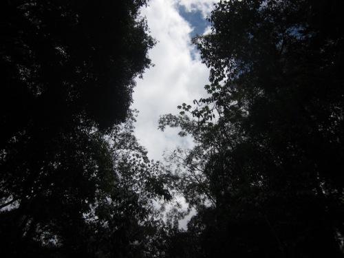sky-as-i-floated