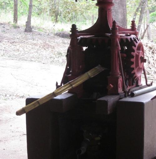 sugar cane grinder