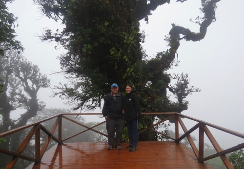 at the top of the world cloud forest