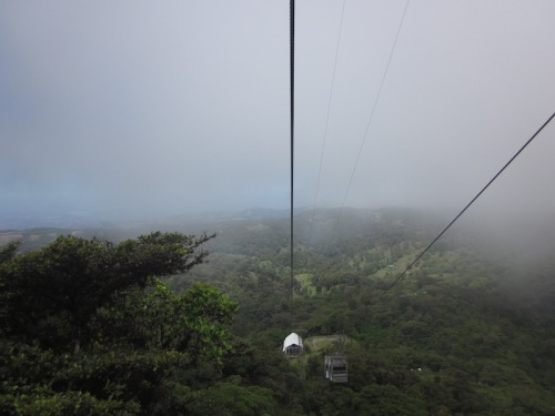 riding thet ram cloud forest
