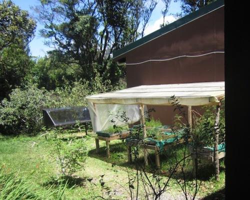 solar oven garden quaker school