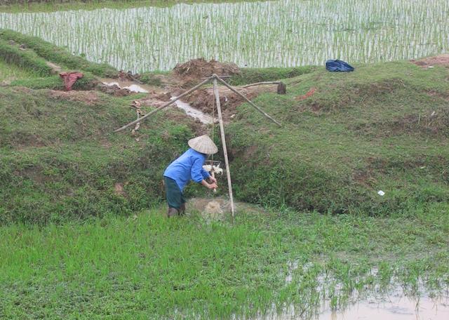 irrigation vietnam