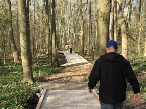 walking in kopegaran woods