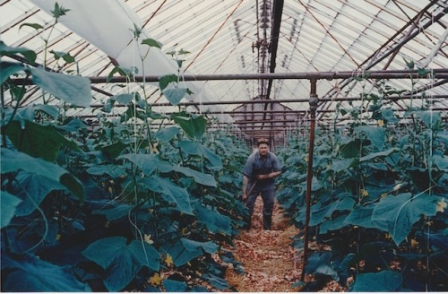 dave's dad in the green house