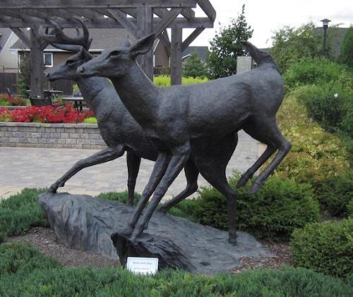 Buck and Doe by Peter Sawatsky