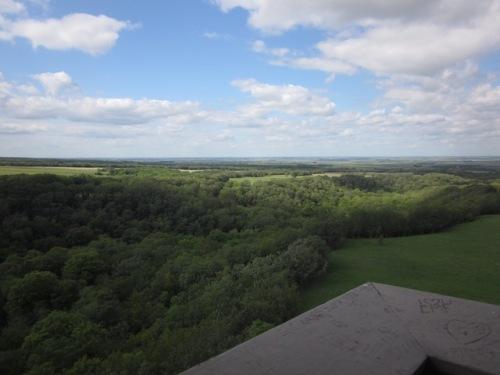 view from nicolett tower