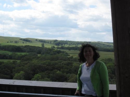 top of nicolett tower