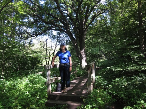 bridge sica hollow park