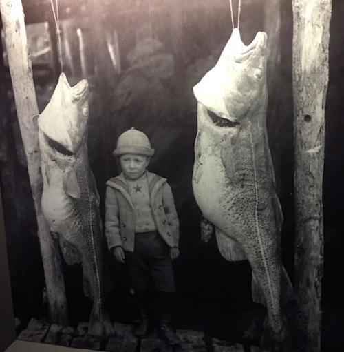 boy-with-cod-rooms