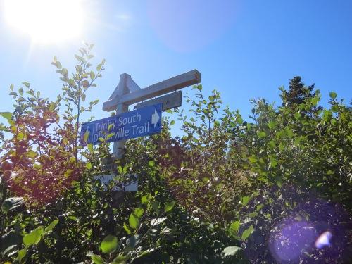 diberville-trail