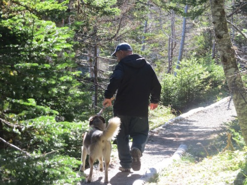 This dog started tagging along as we began the trail and walked most of the way with us. He kept trying to take away Dave's walking stick.