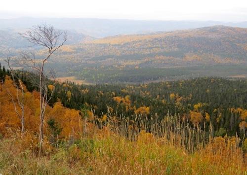fall-newfoundland