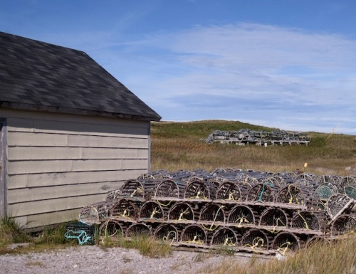 lobster-traps-gros-morne
