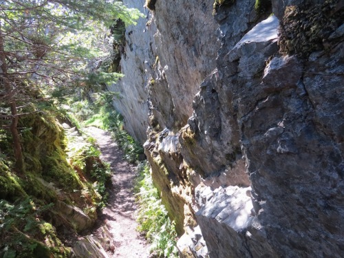 some-parts-of-the-path-lined-by-rocks