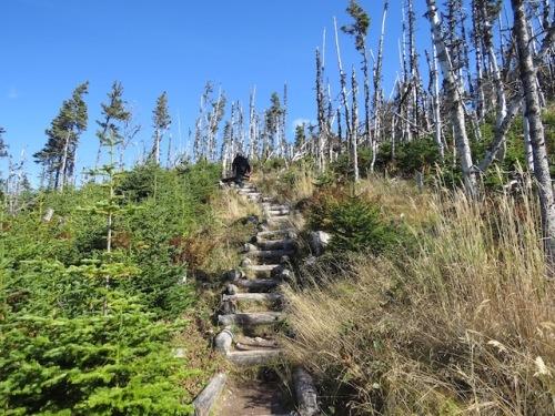 stairs-skerwink-trail