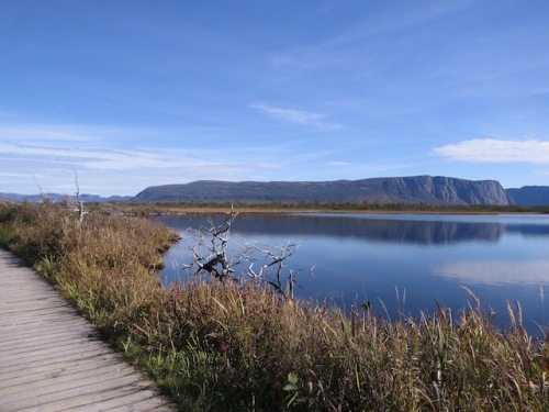 western-brook-pond-trail