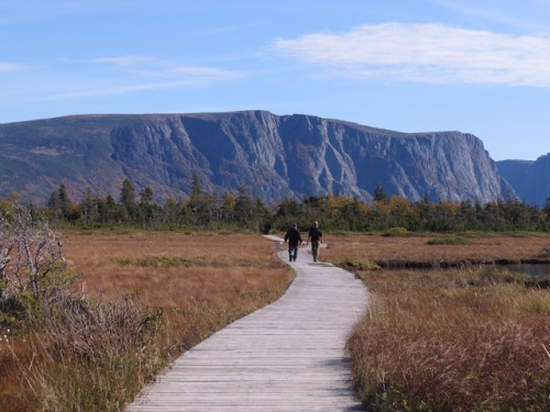 western-brook-pond-walk