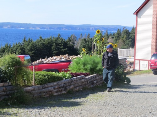 Dave walks past some of the garden plants. See the wood pile in the background for the brick wood fire pizza and bread oven.