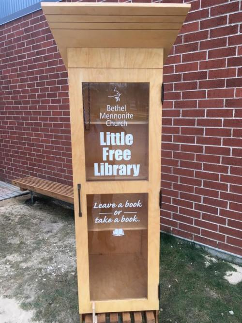little-free-library-copy