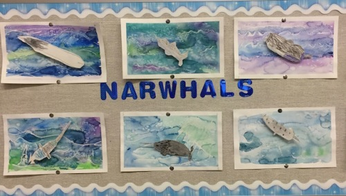 narwhale-bulleting-board
