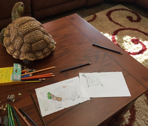 drawing-a-ceramic-turtle