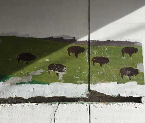 bison mural higgins underpass