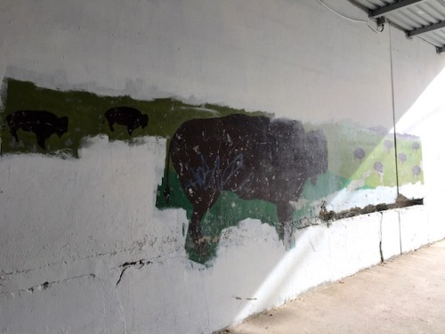 mural bison higgins underpass