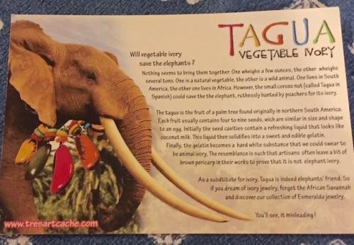 tagua (1)