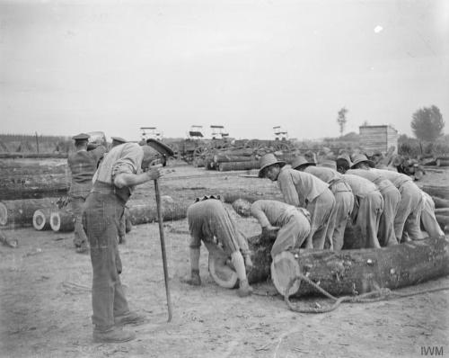 chinese workers at a timber yard in Caestre public domain