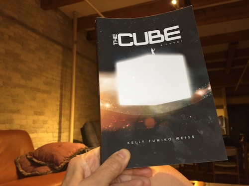 the cube by kelly weiss