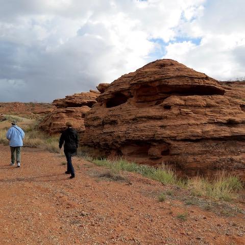 desert reserve