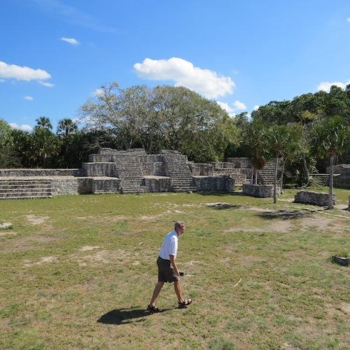 rudy chasing an iguana