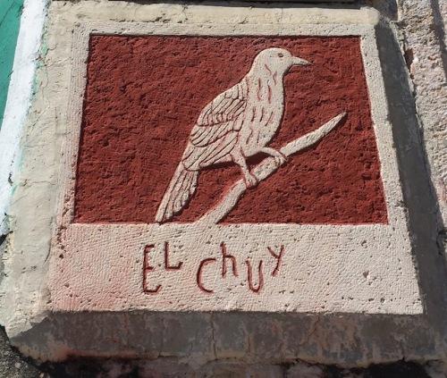 el chuy